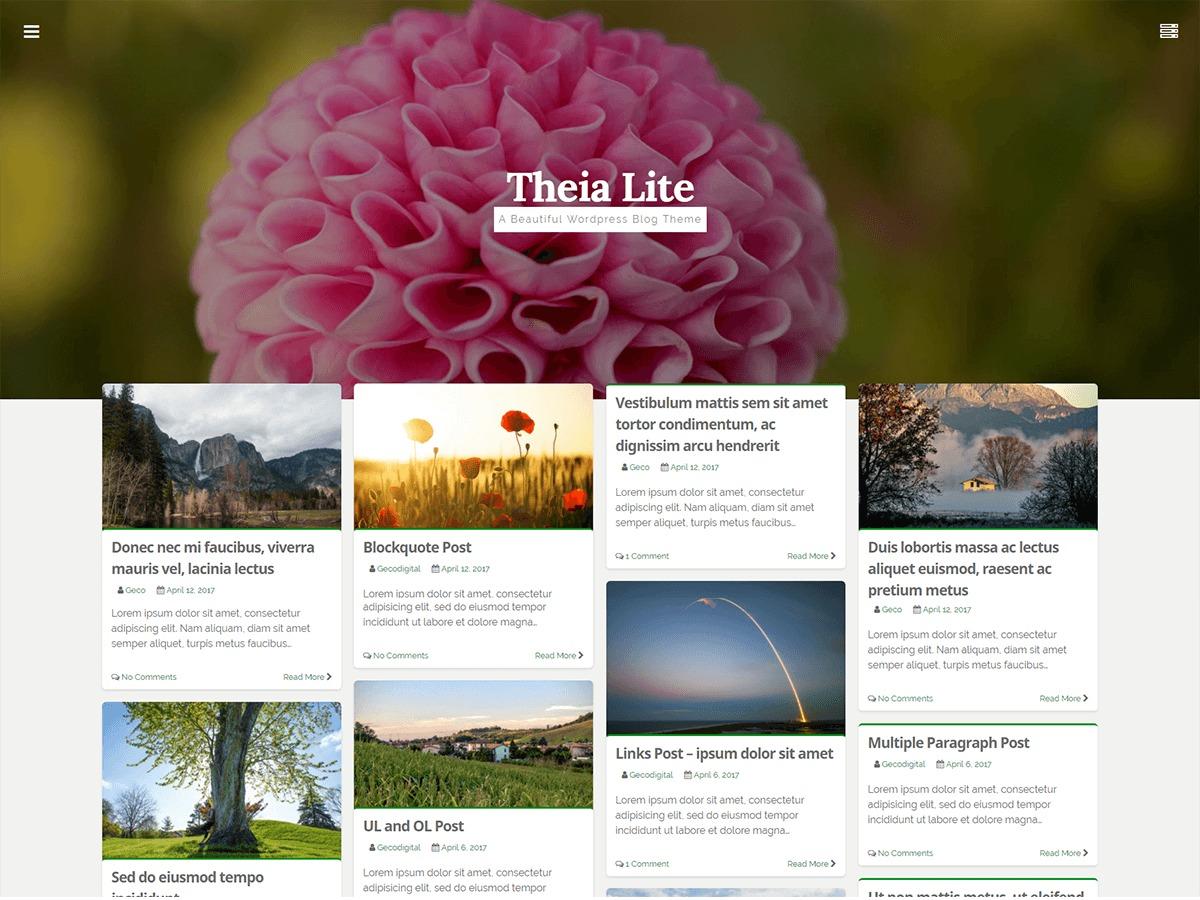 Theia Lite WordPress theme free download