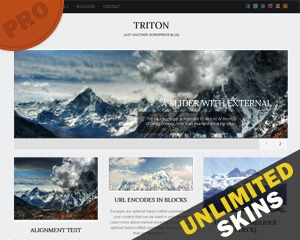 Theme WordPress Triton PRO