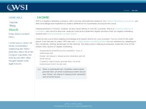 ThemeWsiFr WordPress template
