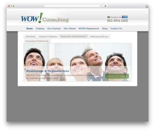 Twenty Eleven free WP theme - wowconsulting.net