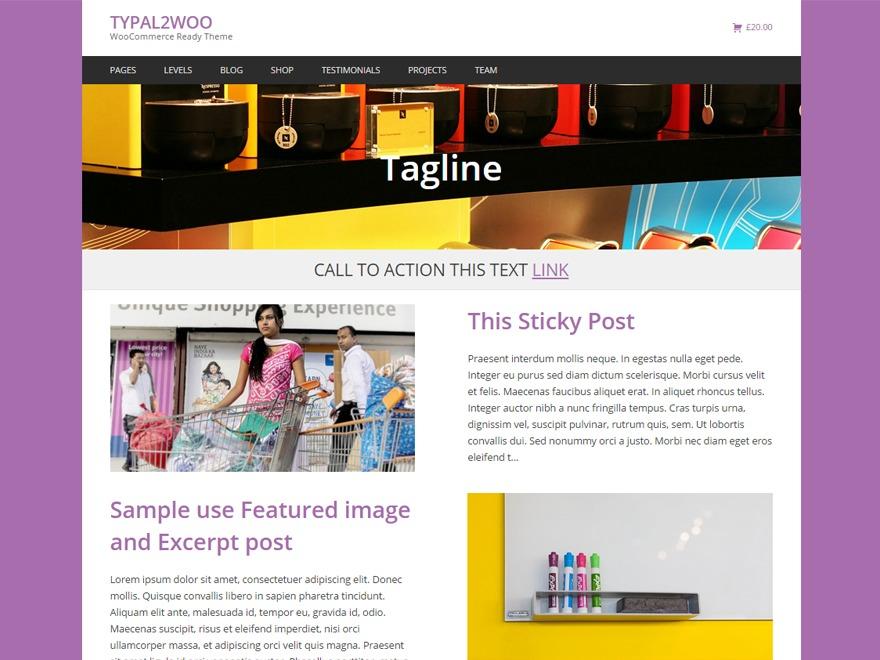 Typal2woo business WordPress theme