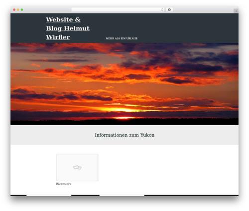 Workfree WordPress blog template - wirfler.com