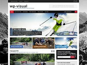 WP-Visual best WordPress template