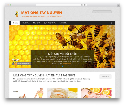 Catch Responsive WordPress theme free download - matongtaynguyen.info