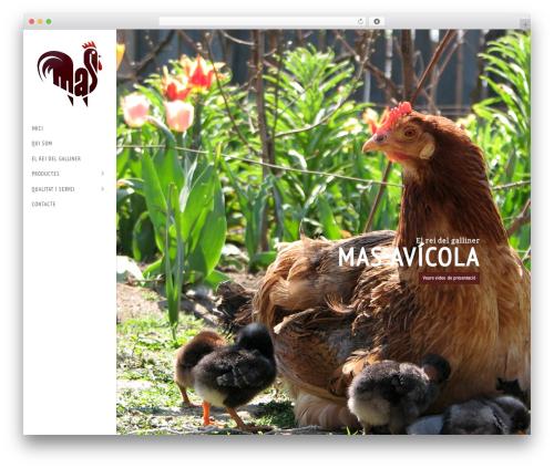 WP template BigFormat - masavicola.com