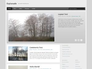 Esplanade Child premium WordPress theme