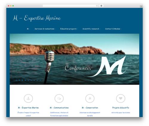 Free WordPress Team Members plugin - m-expertisemarine.com