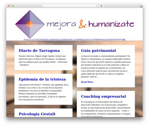 X WP theme - mejorayhumanizate.com