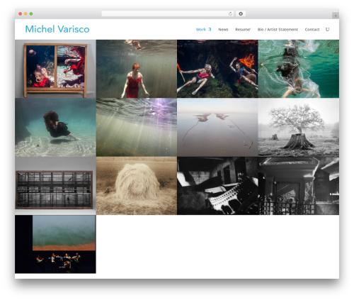 WordPress theme Divi - michelvarisco.com