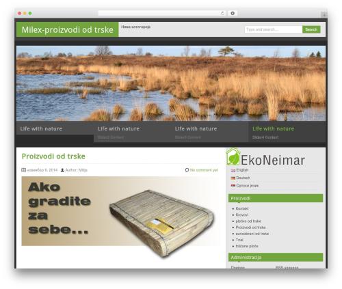 Free WordPress Polylang plugin - milex.rs/sr