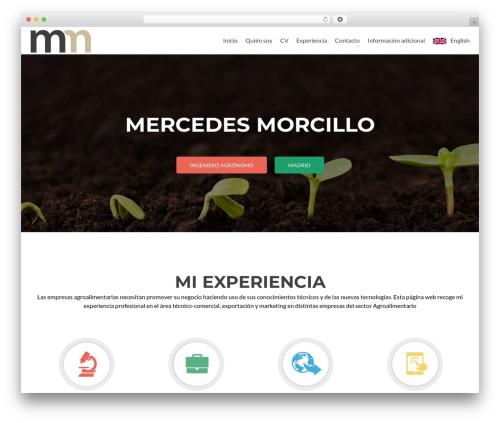 Zerif Lite WordPress page template - mercedesmorcillo.com
