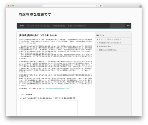 MxS top WordPress theme - michelelewismua.com