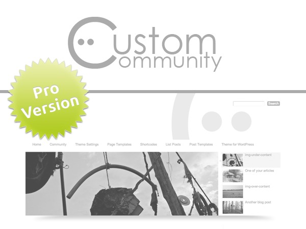 Custom Community Pro WordPress store theme