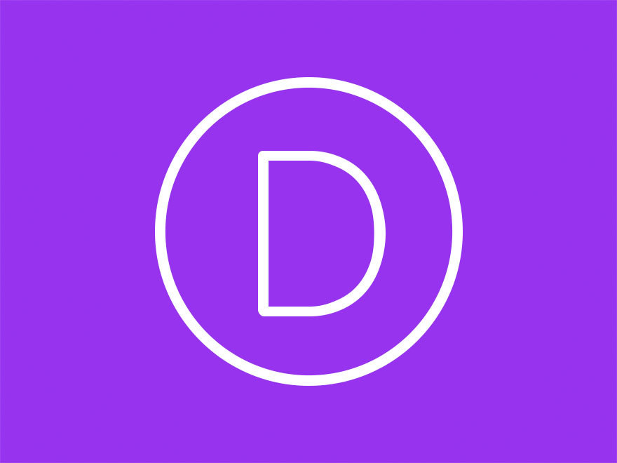 Divi Network WordPress theme
