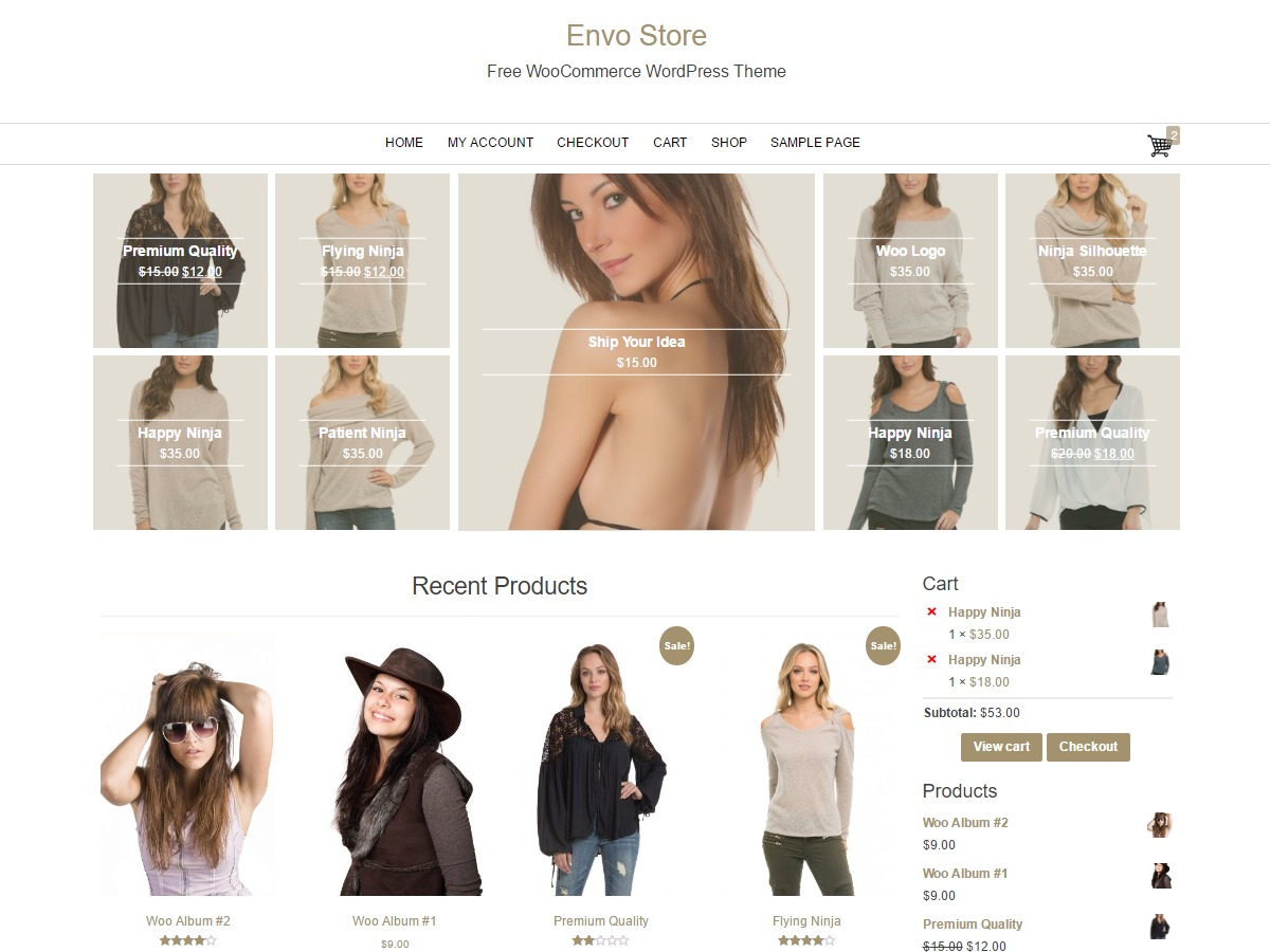 Envo Store WordPress ecommerce theme