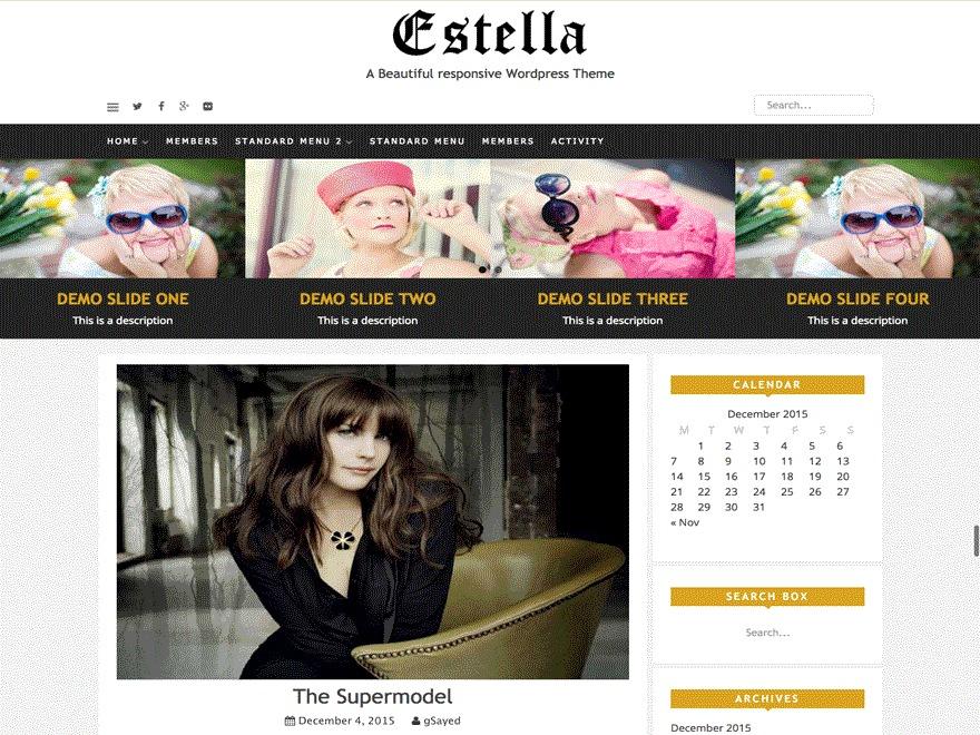 Estella best free WordPress theme