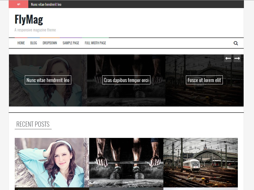 FlyMag Pro best WordPress magazine theme