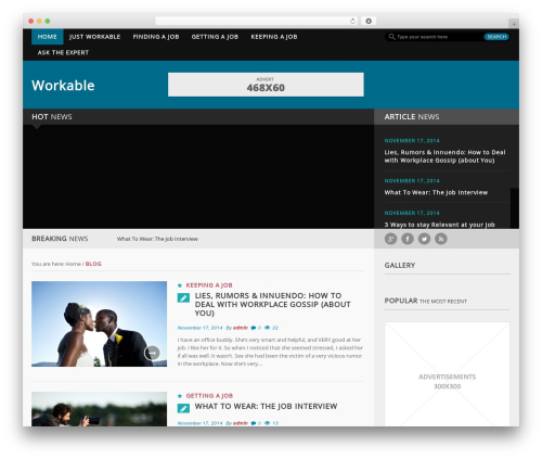 Forceful Lite premium WordPress theme - workable.com.ng