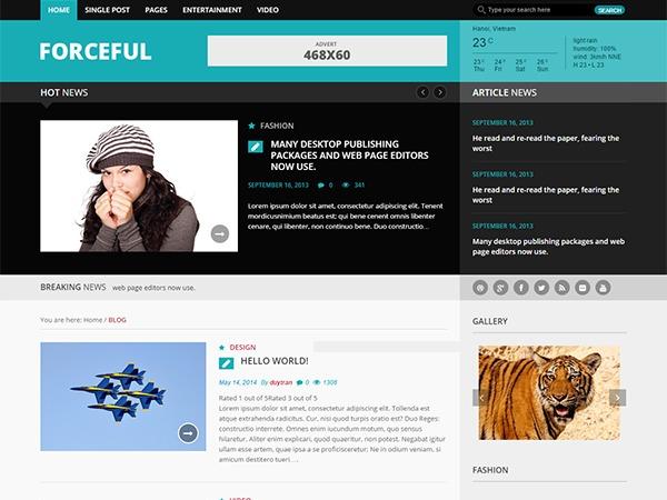 Forceful Lite WordPress news template