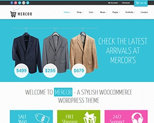 Mercor best portfolio WordPress theme