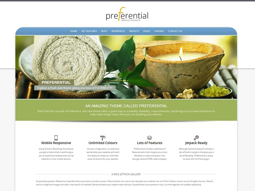 Preferential company WordPress theme