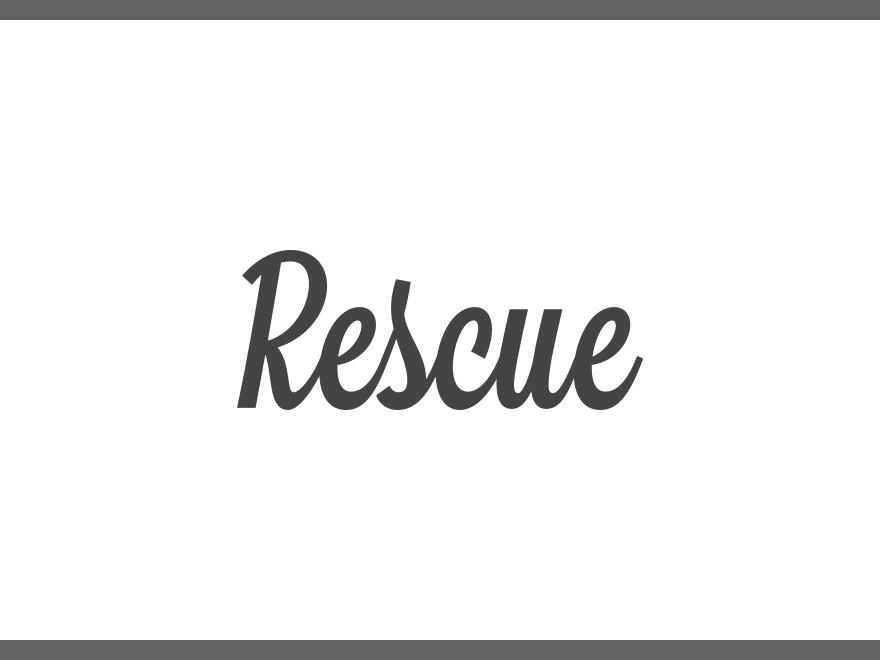 Rescue WordPress theme