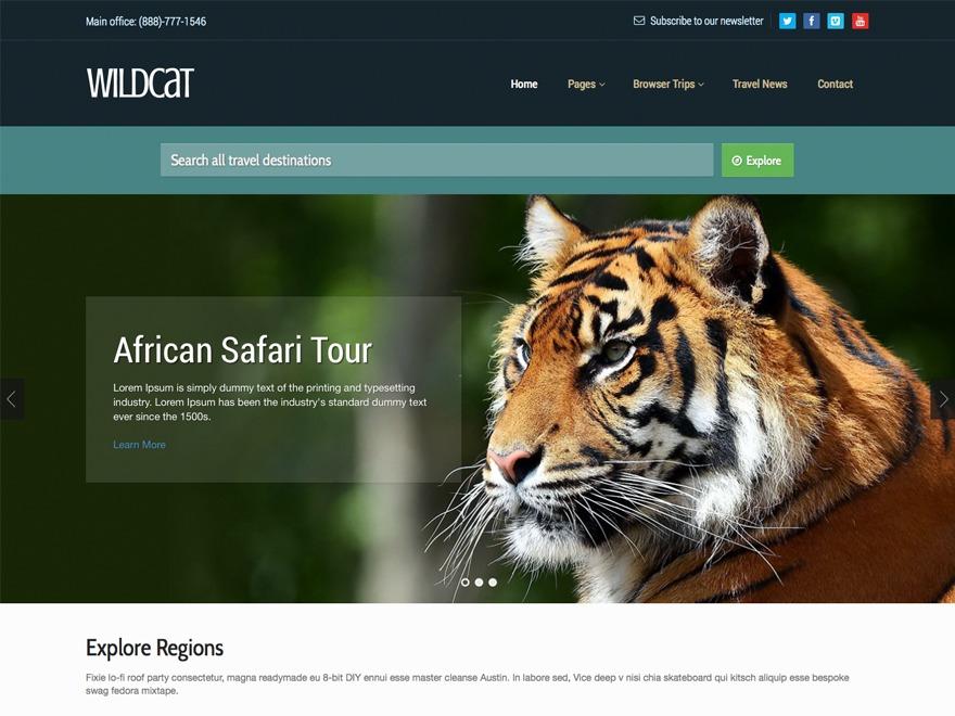 Template WordPress Wildcat Progression