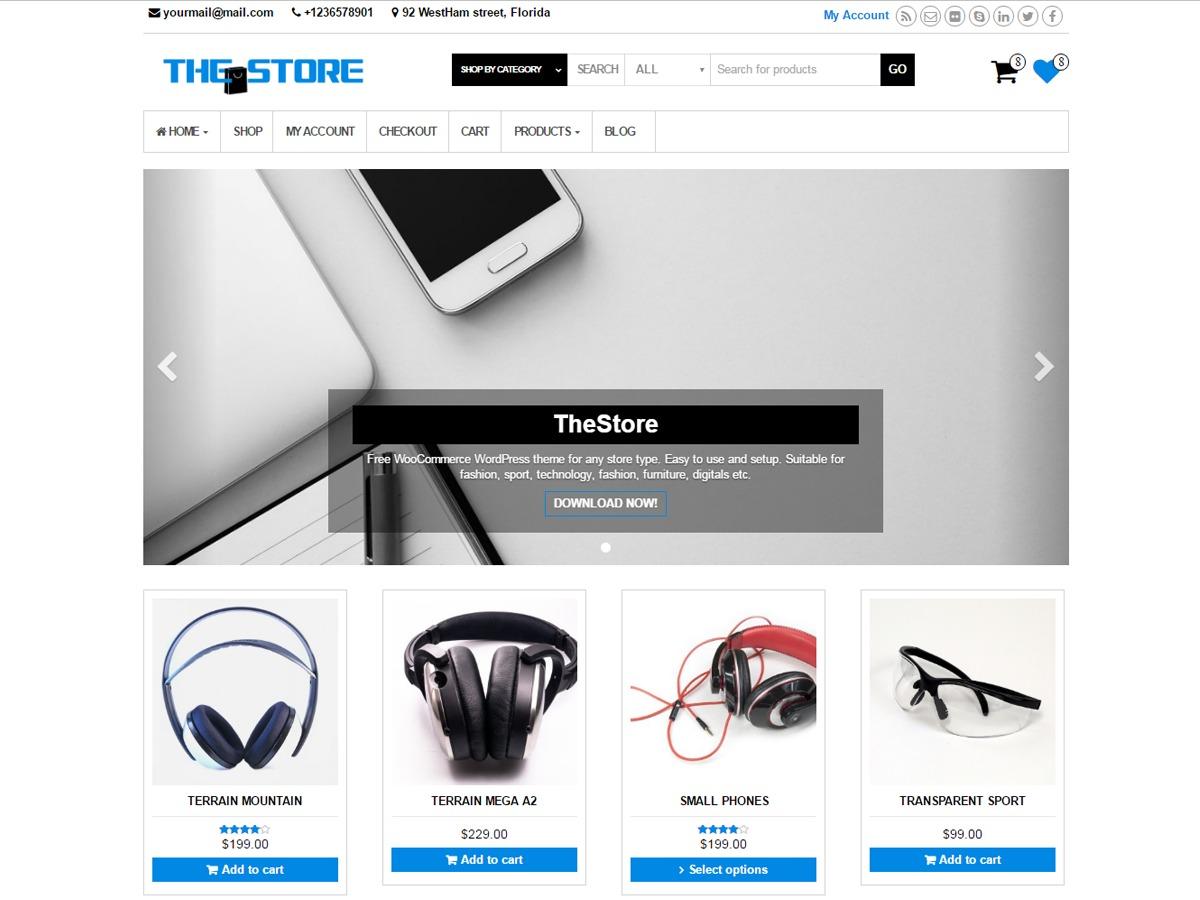 TheStore template WordPress free