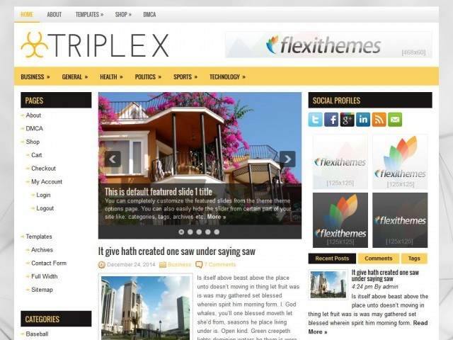 triplex premium WordPress theme