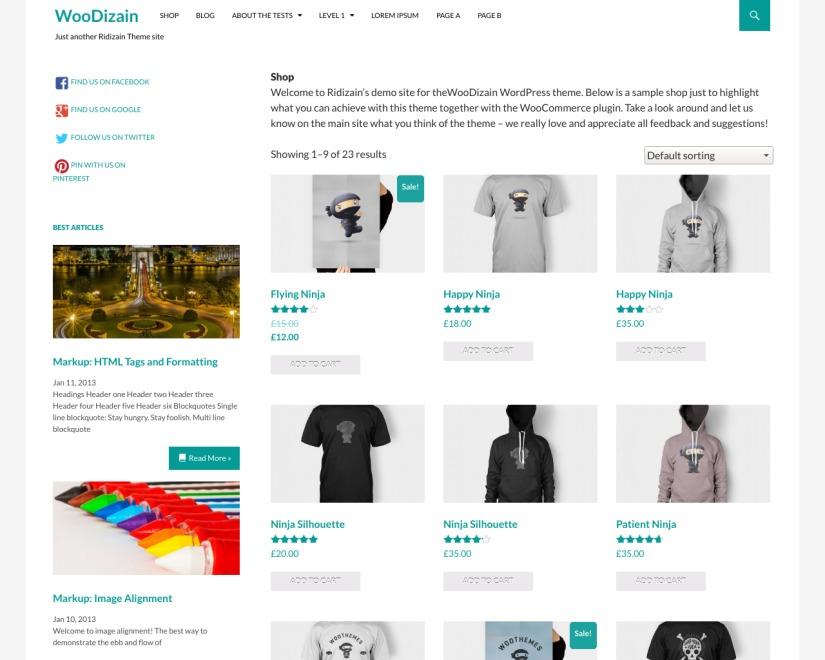 WooDizain WordPress store theme