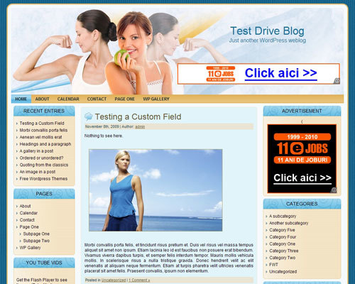 WordPress website template Sportsandhealth