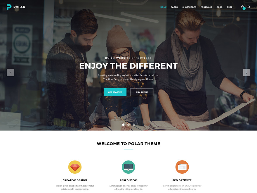 WP theme Polar