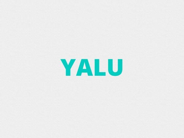Yalu WordPress website template