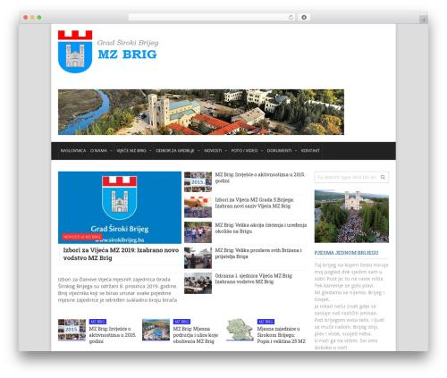DialyMagazine Premium Theme theme WordPress - mz-brig.com