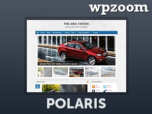 Polaris Theme WordPress theme design