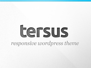 WordPress website template Tersus Child