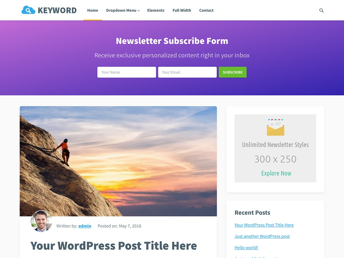 Keyword premium WordPress theme