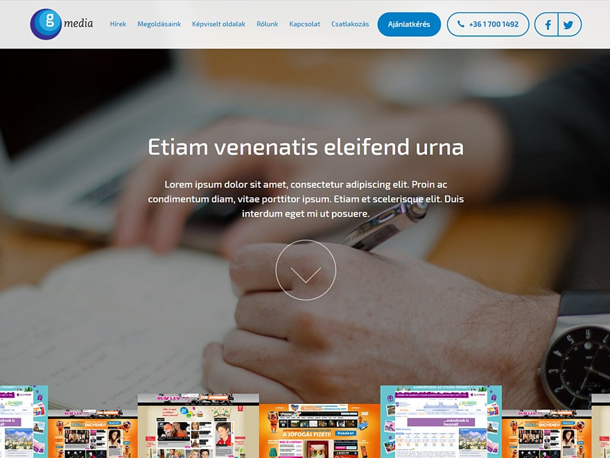 Gmedia WordPress blog theme
