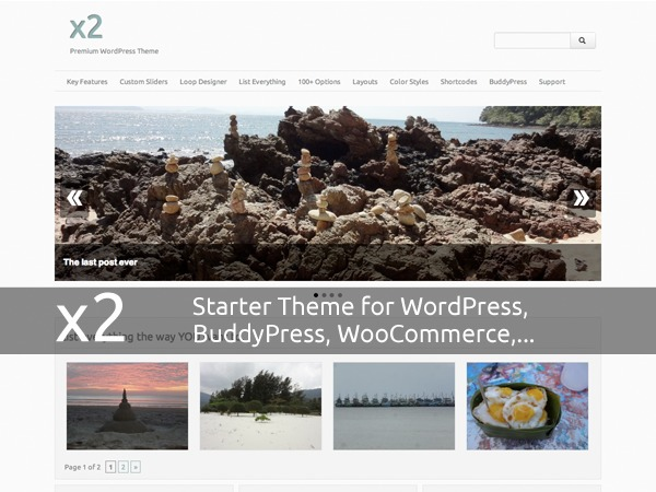 x2 Pro WordPress ecommerce theme