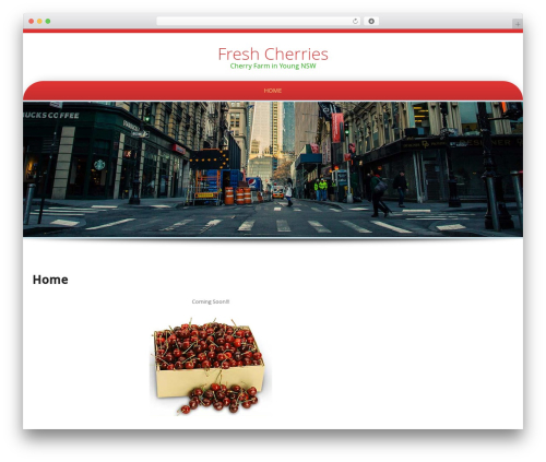 Preferential Lite free WP theme - youngcherry.com.au