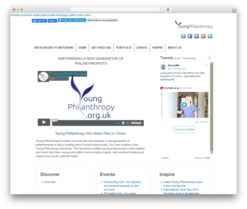 Responsive theme WordPress - youngphilanthropy.org.uk