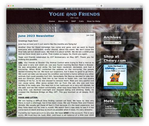 Adventure WordPress template - yogieandfriends.org