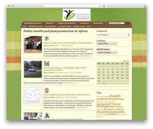 Genesis best WordPress template - yaoundefoundation.org.uk