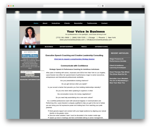 BLANK Theme WordPress template for business - yourvoiceinbusiness.com