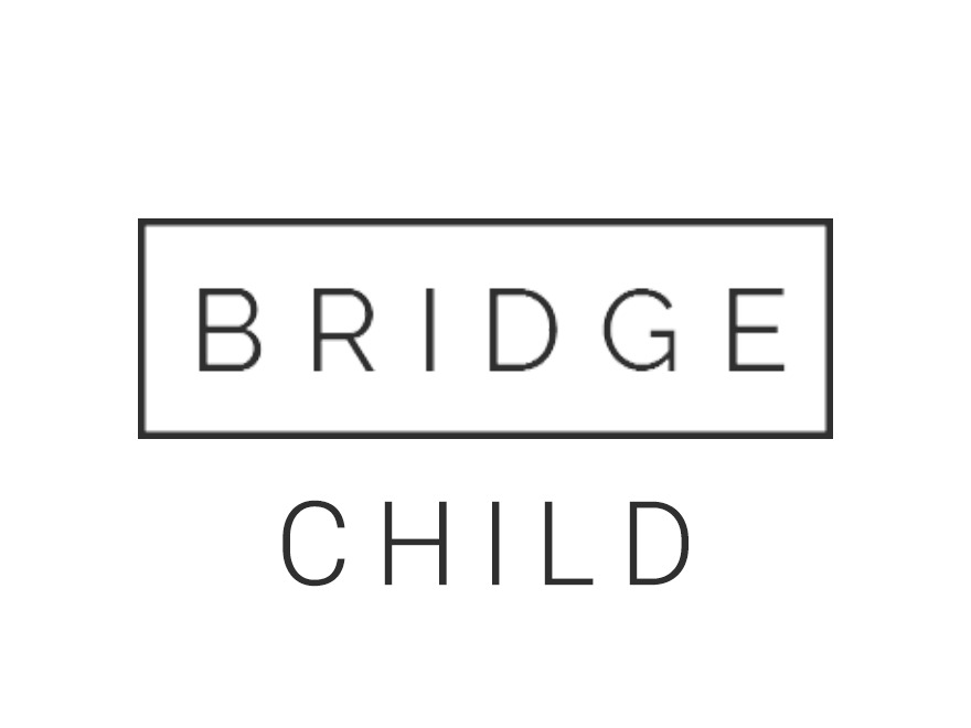 Theme WordPress bridge-child