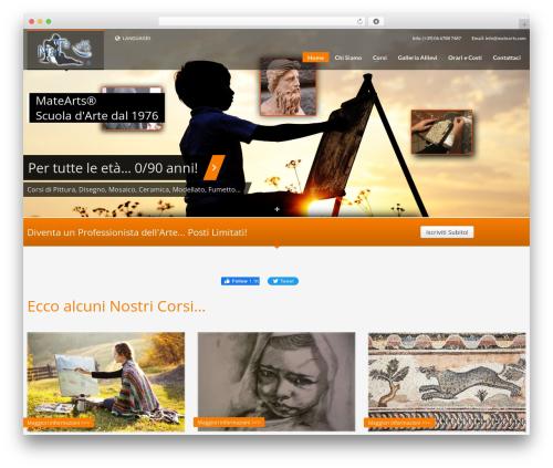 WordPress sitepress-multilingual-cms plugin - matearts.com