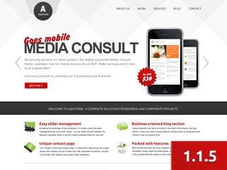 Aquitaine company WordPress theme