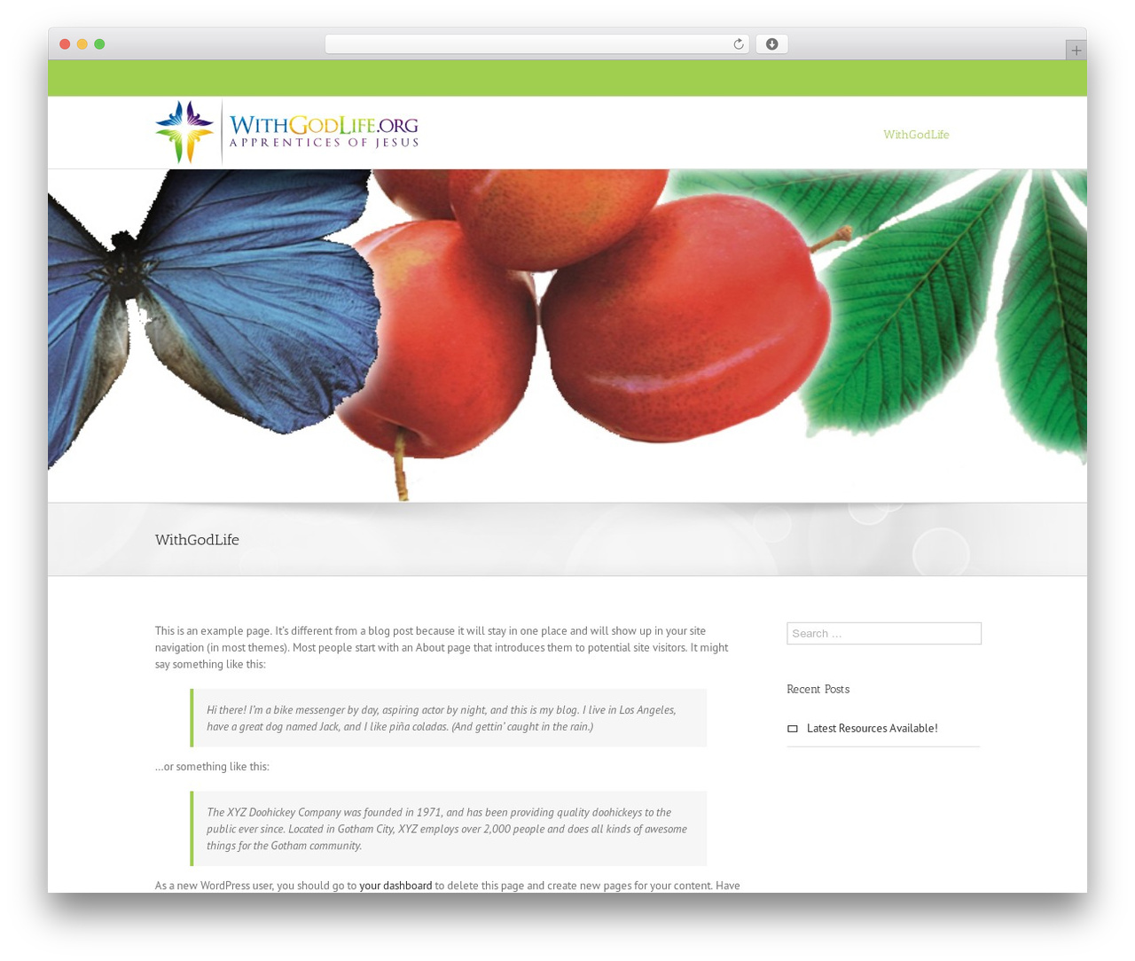 Avada top WordPress theme - withgodlife.org