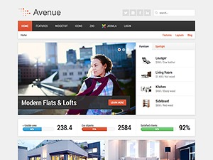 Avenue best WordPress theme
