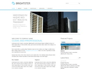 Brightster WordPress ecommerce theme